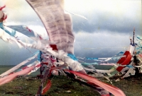 wang_haiyuan_wind_from_the_plateau_1